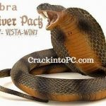 Cobra Driver Pack 2020 Crack + ISO Torrent Free Download Win&Mac